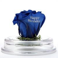 [시들지 않는 영원함 프리저브드 플라워] 아크릴돔-Happy Birthday (색상선택)
