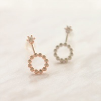 Pure Shine earring