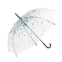 [BT21] 투명 자동 장우산 / 스타