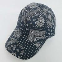 Paisley 패턴 남여공용 볼캡 CH1545926