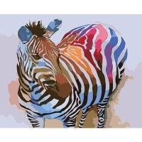 DIY 명화그리기키트 - 화려한 얼룩말 40x50cm (물감2배, 컬러캔버스, 명화, 동물, 얼룩말, 지브라)