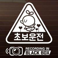 SET_초보운전 삐약이_세모+블랙박스 [자동차스티커/초보운전스티커]
