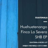 [송도동커피공장] 우에우에테낭고 핀카 라 세베라 (Guatemala) 500g
