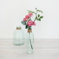 에밀리 장미 가지