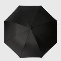 파라체이스 스포티 특대형 골프 자동 장우산 1104