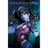FP4755 오버워치(OVERWATCH) 위도우메이커 포스터