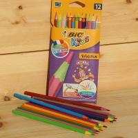 [BiC] 빅 키즈 컬러링 12색 색연필-Evolution CIRCUS HA163-1