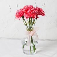 셀프 웨딩 라이트 핑크 카네이션 조화