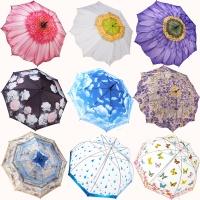 갤러리아 프리미엄 우산 모음