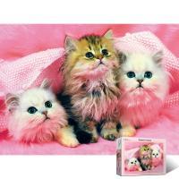 150피스 고양이,고양이,고양이 PL150-28