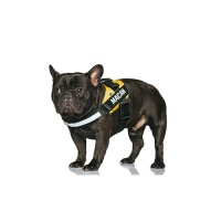 COMFY custom harness yellow