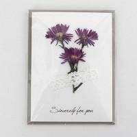 [향기카드] 압화 미니카드 - 부채꽃