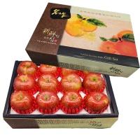 [살속가득] 아삭 달콤한 사과세트 3kg/12~13과