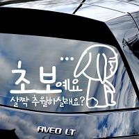 초보예요 살살추월 - 초보운전스티커(536)