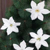 포인꽃 12cm 화이트