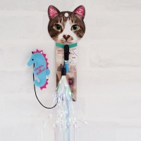 Love pet Teaser Squid(낚시놀이 해마)