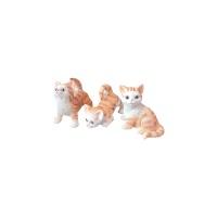 행복한 귀요미 고양이 3종