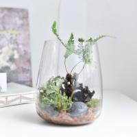 고사리 jar 생화 테라리움 카페 셀프인테리어 소품