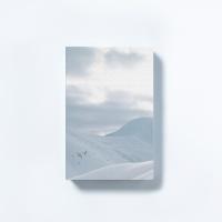 [타이드]인테리어소품캔버스액자 스노우 화이트마운틴