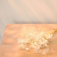 스타 안개 미니다발(4color)