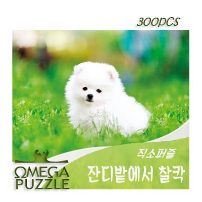[오메가퍼즐] 300pcs 직소퍼즐 잔디밭에서 찰칵 339