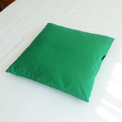 팬톤 소파 방석(솜포함) 50x50 I그린 2P