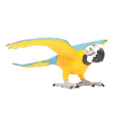 264029 청금강앵무 Blue & Gold Macaw