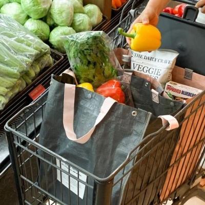 장바구니 타포린 쇼핑 백 2개 카트고정 방수 50kg하중
