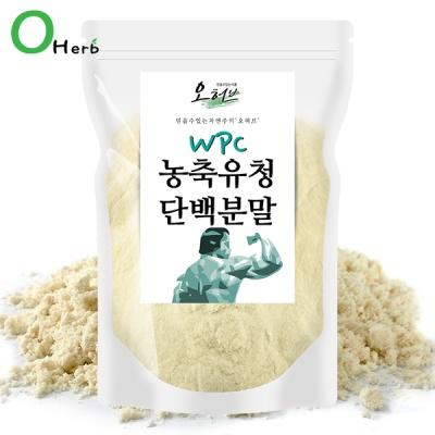 농축유청단백질 99% 분말 500g 유청 가루 WPC