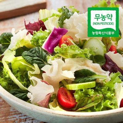 꽃송이버섯(생) 1kg/약용버섯/베타글루칸