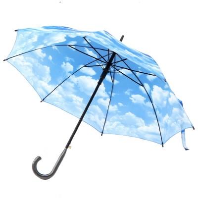 클리어 스카이 - 원목자동장우산