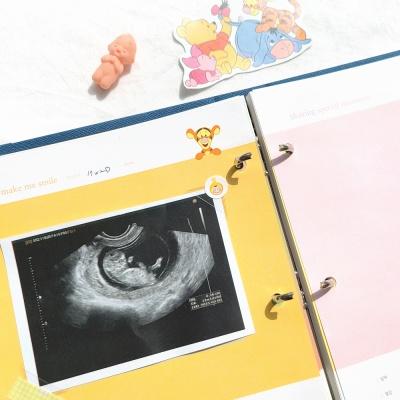 초음파사진 스크랩 리필내지(A5바인더) - 곰돌이푸