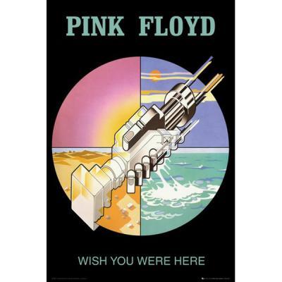 LP1765 핑크 플로이드 Wish You Were Here 2 (61X 91)