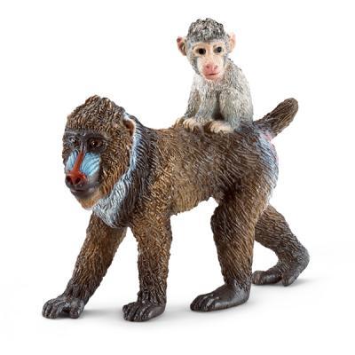 암컷 개코원숭이와 새끼