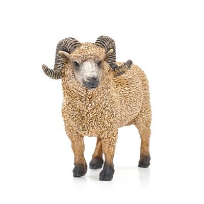 161429 양 Ram
