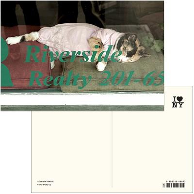 I LOVE NEW YORK (Post card ver.01) - New york 001