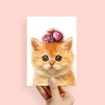 플라워포켓 스탠딩카드 고양이