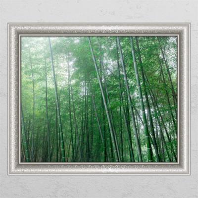 cl338-청량한대나무숲3_창문그림액자