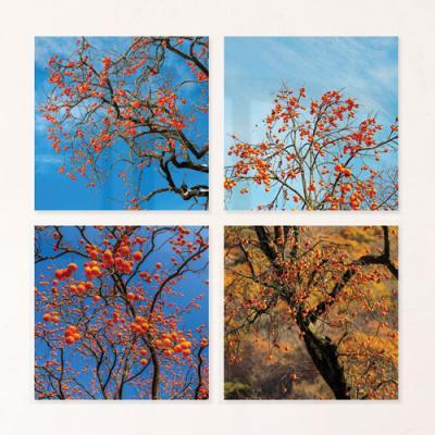 af051-아크릴액자_금전운을불러오는감나무(중형)
