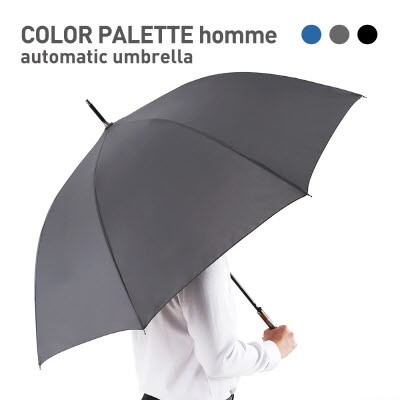 COLOR PALETTE homme 자동 장우산