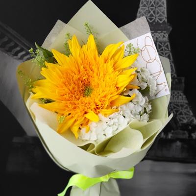 힐링 에너지 옐로 테디베어 해바라기 꽃다발 (생화)