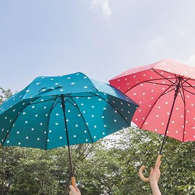 lifestudio 패턴 자동장우산