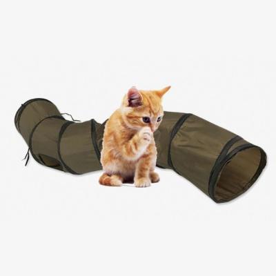 재미있는 고양이 터널