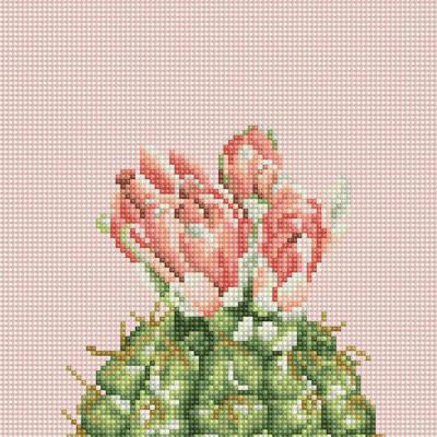 꽃을 품은 선인장 2 (캔버스형) 보석십자수 25x25