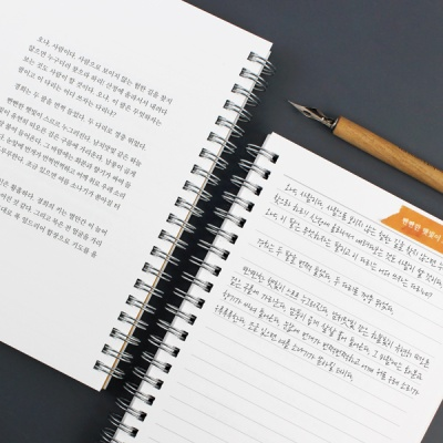 나혜석 라이팅북 B6 (Reservoir 만년필 필사 노트)