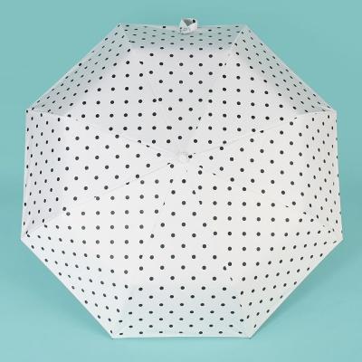 땡땡이 UV차단 완전자동 양우산 방풍 3단우산 화이트