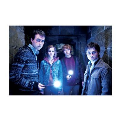 해리 포터 홀로그램 엽서 10:마법 지팡이를 든 친구들