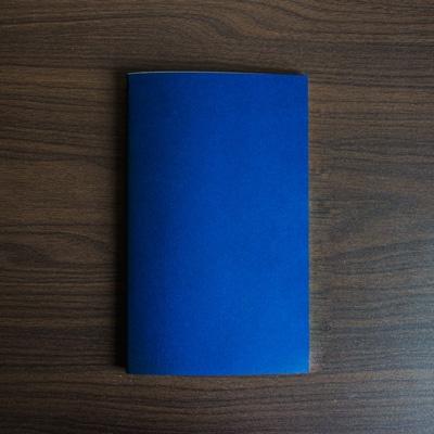 복면사과까르네4G: 타블렛 라인 블루베리