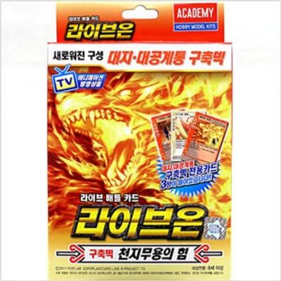 라이브온카드 천지무용의힘 카드덱 카드게임 컬렉션