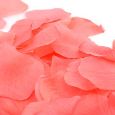 프로포즈 이벤트 꽃잎 (핑크)
